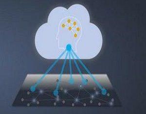 Infinera Instant Network
