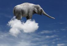 cloud_elefante