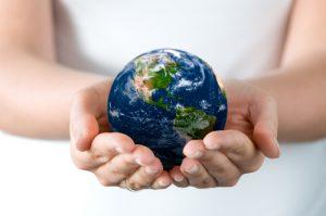 Investimenti e sostenibilità: il segreto delle aziende di successo